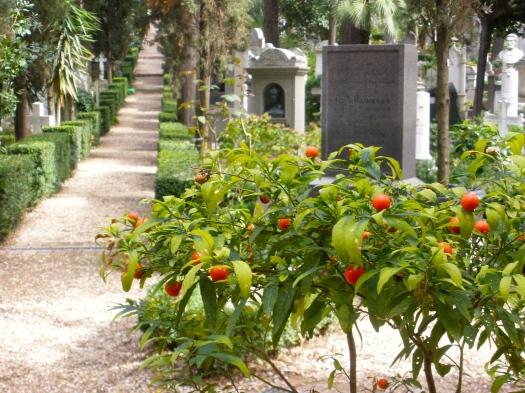 Non Catholic Cemetery, Rome, 2012