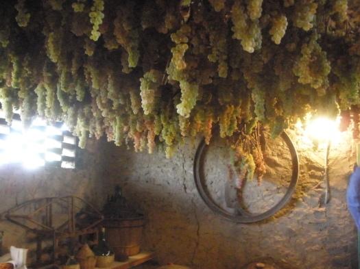Castello di Tignano, Tuscany, 2009